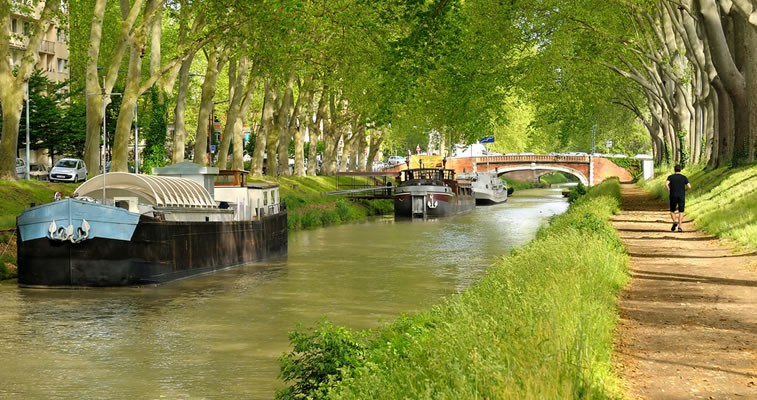 Build your vision till you drop: The Story of the Canal du Midi